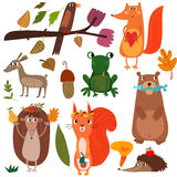 Ensemble de vecteur de région boisée et de Forest Animals mignons - actions illustration de vecteur