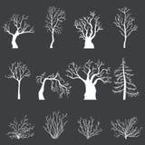 Ensemble de vecteur de silhouettes blanches des arbres et des buissons nus sans feuilles Photo stock