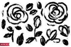 Ensemble de vecteur de drawingroses d'encre, feuilles d'american national standard de tiges, illustration botanique artistique mo illustration libre de droits