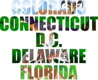 Ensemble de vecteur de mot d'états américains avec des animaux - le Colorado, le Connecticut, D C , le Delaware, la Floride illustration de vecteur