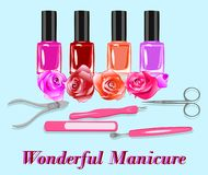 Ensemble de vecteur de nailpolishes et d'outils de manucure illustration stock