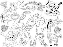 Ensemble de vecteur de Safari Animals et d'oiseaux Animaux et oiseaux de jungle de vecteur Photo stock