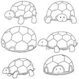Ensemble de vecteur de tortue illustration de vecteur