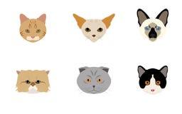 Ensemble de vecteurs et d'icônes principaux de chats illustration stock