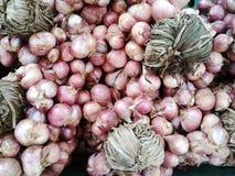 Ensemble de vente d'oignon organique rouge sur le marché Images stock