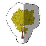 ensemble de vert de chaux d'icône abstraite d'arbre Photographie stock