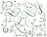 Ensemble de vert de spirales de calligraphie d'art décoratif de flourish de vintage pour la conception Illustration EPS10 de vect Image stock