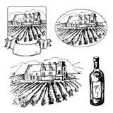 Ensemble de vignoble différent et bouteille de vin Photos stock