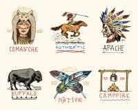 Ensemble de vintage gravé, tiré par la main, vieux, de labels ou d'insignes pour l'Indien ou le natif américain buffle, visage av Image libre de droits