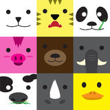 Ensemble de visages animaux Photographie stock libre de droits