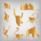 Ensemble de zodiaque chinois - singes Images stock