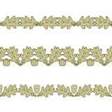 Ensemble des frontières sans couture des feuilles et du gland de chêne illustration stock