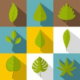 Ensemble différent d'icône de feuilles, style plat Image stock