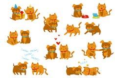 Ensemble drôle de chien et de chat, personnages de dessin animé domestiques mignons d'animaux de compagnie dans différentes situa illustration stock