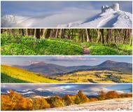 Ensemble du paysage de 4 saisons Photo libre de droits