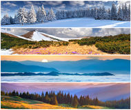 Ensemble du paysage de 4 saisons Photo stock
