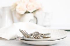 Ensemble en pastel de vaisselle Image stock