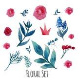 Ensemble floral d'aquarelle de vecteur avec des feuilles de vintage Photos stock