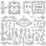Ensemble floral de décor de griffonnages Frontières, éléments, vue Photographie stock libre de droits