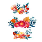 Ensemble floral de guirlande d'aquarelle de vecteur avec des feuilles et des fleurs de vintage Conception artistique pour des ban Image stock