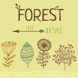 Ensemble floral de vecteur de différents éléments de forêt Images libres de droits
