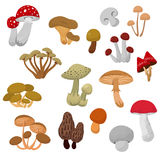 Ensemble frais de vecteur de bande dessinée de champignons et de champignons d'automne illustration stock