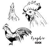 Ensemble graphique de coq Photographie stock