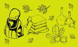 Ensemble graphique de vecteur d'école Éducation et étude illustration stock