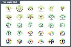 Ensemble humain d'icône de concept d'arbre coloré créatif Photo libre de droits