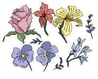 Ensemble impressionnant de fleurs tirées par la main colorées dans des tons lumineux illustration libre de droits