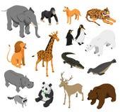 Ensemble isométrique d'animaux de zoo illustration libre de droits