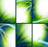 Milieux floraux lumineux de vecteur réglés Image stock