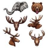 Ensemble mammifère africain de croquis d'animal et de forêt illustration libre de droits