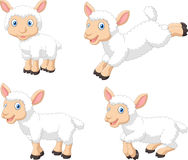 Ensemble mignon de collection de moutons de bande dessinée, d'isolement sur le fond blanc illustration libre de droits