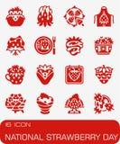 Ensemble national d'icône de jour de fraise de vecteur photographie stock libre de droits