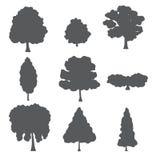 Ensemble naturel de vecteur d'arbres forestiers Photo stock