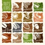 Ensemble Nuts d'icône Image stock