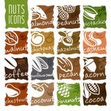 Ensemble Nuts d'icône Images libres de droits