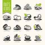 Ensemble Nuts d'icône Photographie stock
