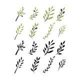 Ensemble olive de brunch Illustration de Digital Images stock