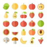 Ensemble plat d'icône de fruit de vecteur Image stock