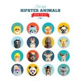 Ensemble plat d'icône de vecteur d'avatar d'animaux de hippie de style Images libres de droits