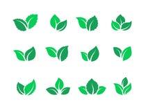Ensemble plat de feuilles Logos de nourriture verte de Vegan, ?nergie d'eco d'usine de ferme, label simple de tisane de feuille d illustration stock