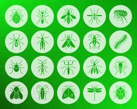 Ensemble plat de vecteur d'icônes découpé par forme d'insecte de danger illustration stock