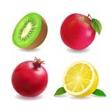 Ensemble réaliste de vecteur d'icônes de fruits de jus Apple, citron, kiwis, pamplemousse Images libres de droits