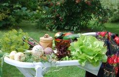 Ensemble remarquable de produits pour des végétariens Photos libres de droits