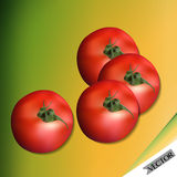 Ensemble rouge de tomate Photo stock