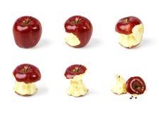 Ensemble rouge mûr de composition en pomme avec la morsure différente d'isolement sur le blanc Photos libres de droits