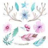Ensemble rustique d'aquarelle de fleurs et de feuilles Image stock