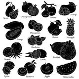 Ensemble sans couleur avec les fruits tropicaux, autocollants de bande dessinée de vecteur Photos stock